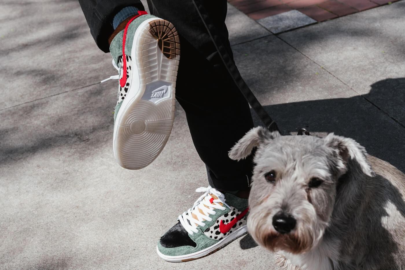 The Nike SB Dunk High 'Walk The Dog' Is