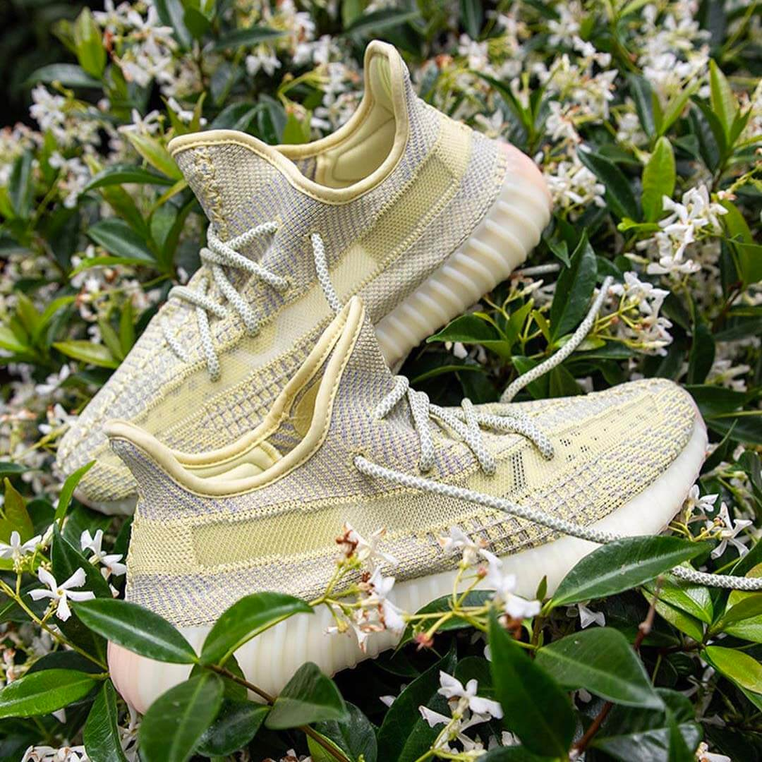Why You Need The Yeezy Boost 350 V2 'Antlia' In Your