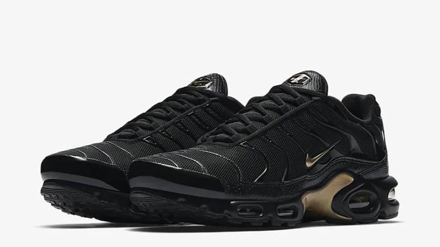 Nike TN Air Max Plus Black Gold | Where
