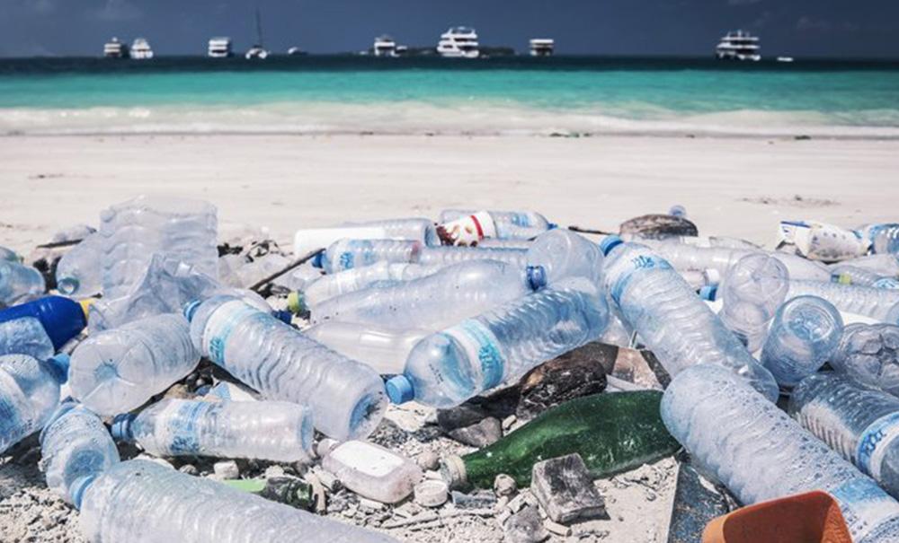 adidas parley beach rubbish