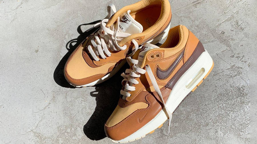 Nike Air Max 1 SNKRS Day Brown Lifestyle