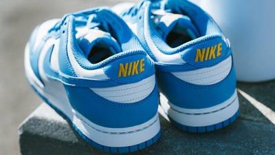 Nike Dunk Low Sail Coast Lifestyle Back