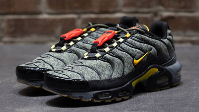 Nike Air Max Plus Fresh Perspective front