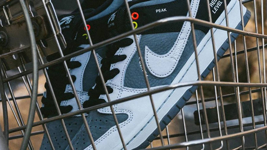 Nike SB Dunk Low VX1000 Camcorder First Look Side