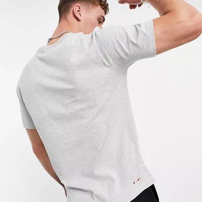 Champion Reverse Weave Boston Red Sox Logo T-Shirt Grey Back