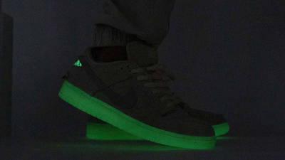 Nike SB Dunk Low Mummy On Foot In Dark