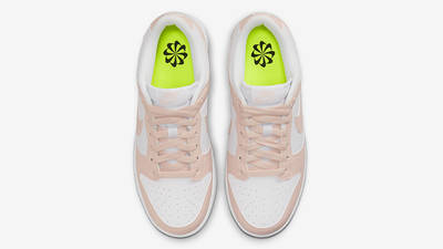 Nike Dunk Low Move to Zero Pink DD1873-100 Top