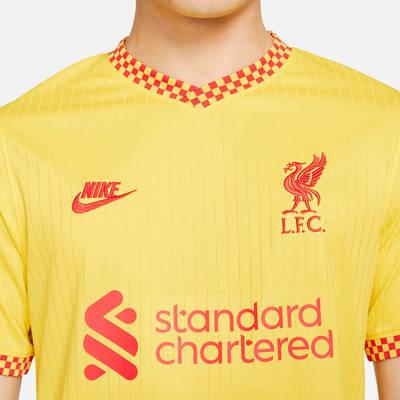 Nike Liverpool F.C. 2021-22 Stadium Third Football Shirt DB5902-704 Detail