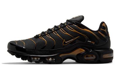 Nike TN Air Max Plus Cordura DO6700-001
